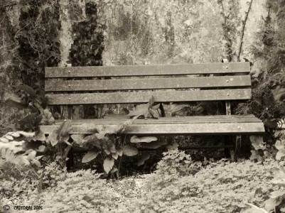banco-jardim-6.jpg